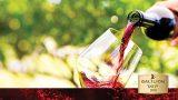 wineuar for menu slider5
